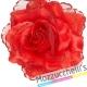Molletta Rosa Rossa spagnola - Mazzucchellis