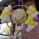 decorazione prima comunione - Mazzucchellis