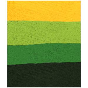 ACQUA-COLOR SPLIT CAKE FOREST GIALLo verde nero 6ml. carnevale halloween feste a tema truccabimbi - Mazzucchellis