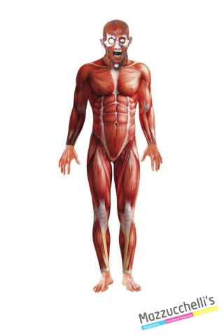 Costume Second Skin Anatomy Man - Corpo Umano CARNEVALE HALLOWEEN O ALTRE FESTE A TEMA - Mazzucchellis