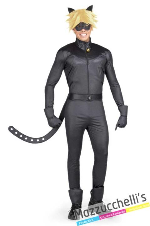 Chat-Noir---Ladybug-del-Cartone-Animato-Miraculous--1-Mazzucchellis