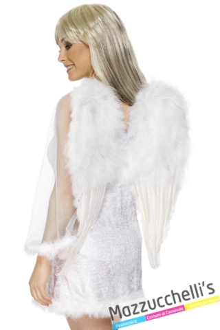 ali-angelo-bianco---Mazzucchellis