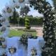 arco-matrimonio-festa-sposi-allestimento---mazzucchellis