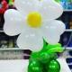 centrotavola-margherita-compleanno-nascita-o-altri-eventi---mazzucchellis